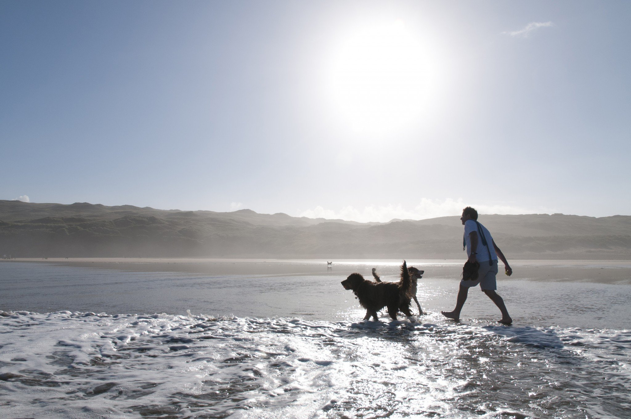 Our Guide to Dog Friendly Places to Stay