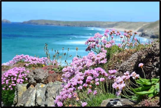 A Virtual Day Tour of   Cornwall's Rugged North Coast